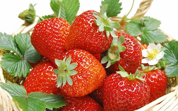 Những thực phẩm giúp kiềm chế các cơn đau mạn tính