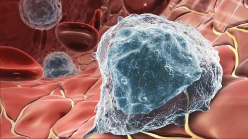Thử nghiệm thành công vaccine chống ung thư